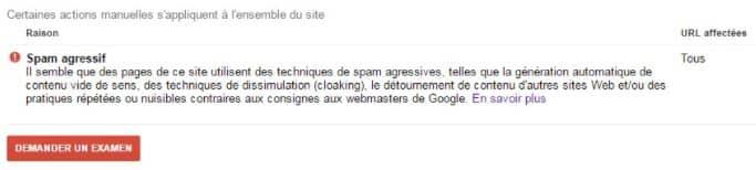 pénalité google action manuelle